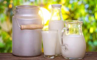 Молоко — содержание БЖУ, калорийность, полезные свойства