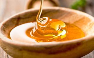 Мед — содержание БЖУ, калорийность и полезные свойства