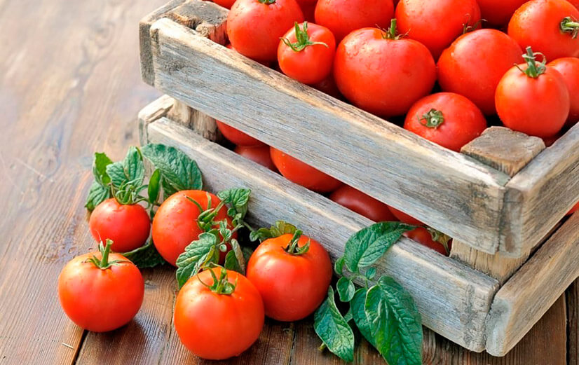 Калорийность и применение в похудении помидора